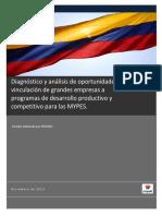 Programas de Desarrollo Mype en Colombia