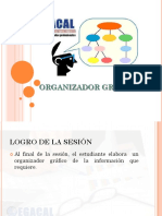Organizador Grafico Ok
