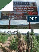 "2015. Arcaine Milan. ""RODEO"" Comunidad Modelo Paraíso Cultural de La Quinua Real Ecológica_LaQuinua.blogspot.com"