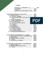 Analiza Diagnostic a Unei Firme