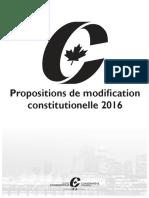 Constitution Booklet FR v2