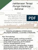 FT 2 Penatalaksanaan Hiperfungsi Kelenjar Adrenal.ppt