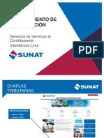 Procedimiento de Fiscalizacion-sunat