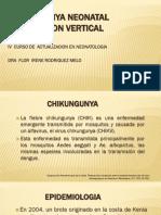 Chikungunya Neonatal