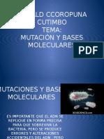 Mutaciones y Bases Moleculares Teoria.pptx
