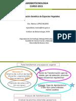 Clase 4 2015 Transformacion Fondo Blanco