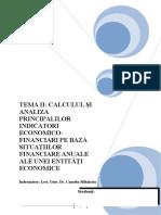 Calculul Si Analiza Principalilor Indicatori Economico Financiari Pe Baza Situatiilor Re Anuale Ale Unei Entitati Economice