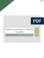 Proiect - Fractura de Gambă