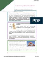 neuropsicologia 3
