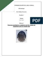 Tarea 1 Geoquímica de Fósiles