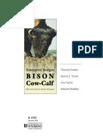 Bison Budget