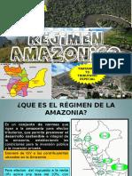 RÉGIMEN AMAZÓNICO