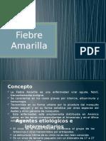 Fiebre Amarilla y Fiebre Tifoidea