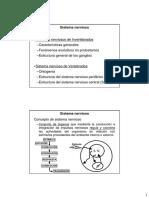 Sistema Nervioso_I_Invertebrados.pdf
