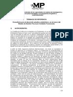 TdR-estudio-estadista-transversal-modelo-de-gestioÌ-n.doc