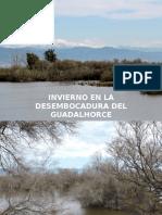 Invierno en la desembocadura del Guadalhorce