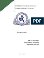 Proiect economic.docx