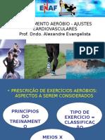 Treinamento Aerobio Ajustes Cardiovasculares
