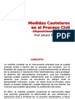 8) Medidas Cautelares en El Proceso Civil. Disposiciones Generales - DPC II (2016-I)