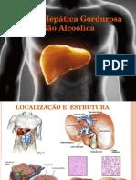 Doença Hepática Gordurosa Não Alcoólica - Seminário - Cópia