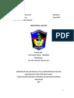 referat(1).doc