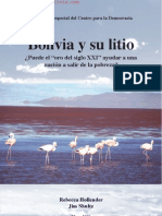Bolivia y Su Litio Analisis 2010