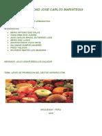LAS NORMAS DE PROMOCION  DEL SECTOR AGRARIO  WORD.docx