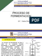 Proceso Fermentacion