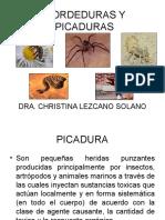 MORDEDURAS Y PICADURAS EXPOSICION