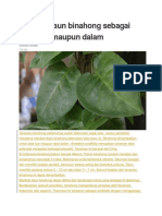 Manfaat daun binahong sebagai obat luar maupun dalam.docx