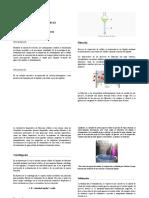 Anexo 1 Del Informe 2