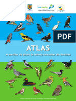 Atlasul-Pasarilor-2015