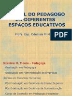 o Papel Do Pedagogo Em Diferentes Espaços Educativos