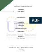 100411_53_Trabajo_Fase2
