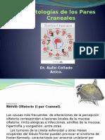 Patologías de los Pares Craneales.pptx