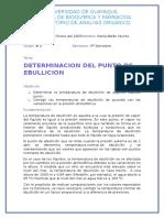 PUNTO DE EBULLICION