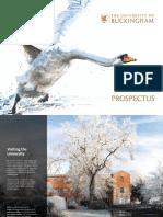 Uob_Prospectus.pdf