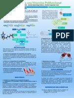 Poster Bioquímica. La Biotina Una Proteína Polifucional