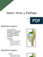 Vasos Torax y Esófago