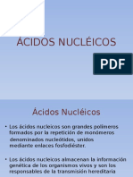 _CIDOS_NUCL_ICOS.pptx
