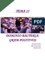 Bacterias gram positivas