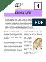 Bibliografia Libro Esmalte