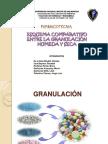 139822586 Granulacion Humeda y Seca