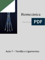 Biomecânica - Aula 7