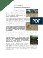 Reporte tipos de suelo.docx