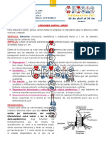 8. Lesiones Ampollares 2G