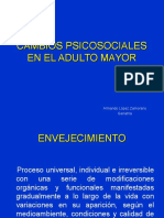 Cambios Psicosociales en El Adulto Mayor