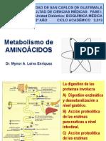 Metabolismo de Aminoacidos 1
