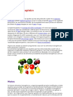 Alimento transgénico.docx