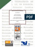 Análisis comparativo de los mecanismos de replicación y reparación del ADN